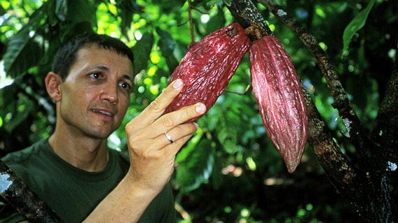 Guten Kakao erkennt Gianluca Franzoni, wenn er ihn fühlt. Bild: ARTE / © Medienkontor FFP