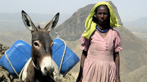Mit ihrem neuen Esel Fiori kann Lemlem zwei statt nur einen Kanister Wasser von der Quelle in ihr Dorf transportieren. Bildrechte: ARTE / © Medienkontor FFP