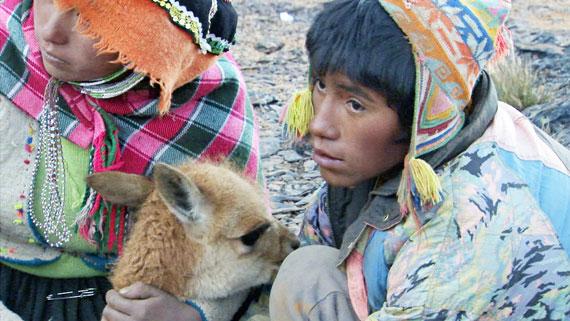 Alljährlich veranstalten die Einwohner eines peruanischen Andendorfs eine Vikunja-Jagd. Das zur Familie der Kamele gehörende Vikunja liefert eine äußerst feine Wolle, die eine wichtige Einnahmequelle für die Dorfbewohner darstellt. Bild: ARTE F / © NHK