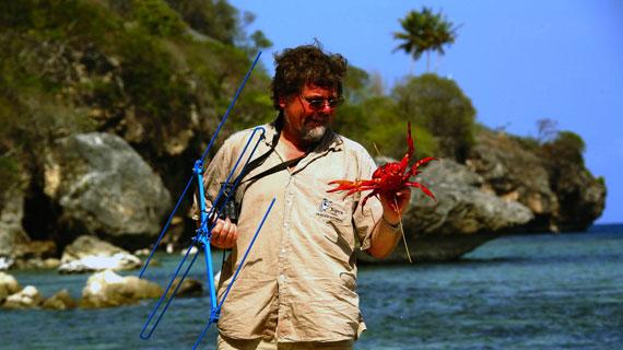 Der Forscher Steve Morris hat die Rote Landkrabbe mit einem Sender präpariert, damit er ihren Weg während der Krabbenwanderung verfolgen kann. Bild: ARTE / © Medienkontor FFP