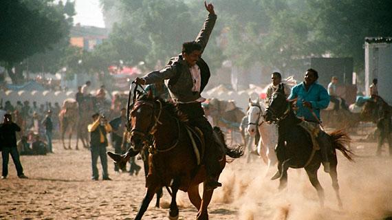 Jedes Jahr im November verwandelt sich die kleine, karge Wüstenoase Pushkar zum Pilgerort für Millionen Inder. Pferderennen in Pushkar. Bild: rbb/SWR/Ilka Franzmann