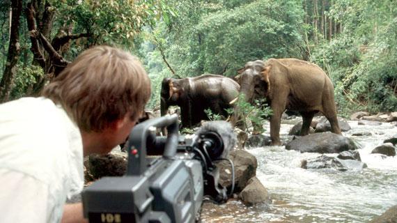Tierfilmer Ernst Sasse filmt die seltenen asiatischen Elefanten im Cat Tien Nationalpark. Bild: NDR/Wolfgang Wegner