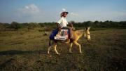 Mit seinem Esel bringt Luis Serrano Bücher zu Kindern in den abgelegenen Regionen der Sierra Nevada de Santa Marta. Bild: NDR / © Marco Berger/doc.station