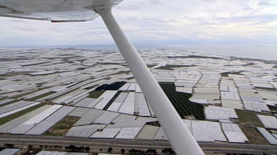 Flug über Gewächshäuser in Almeria ( Südspanien). Bild: SWR
