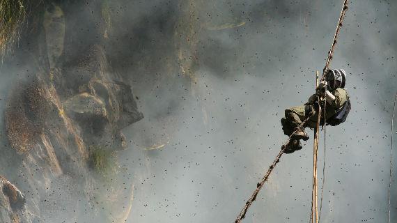 Der begeisterte Imker Jimmy Doherty hat sich ein ehrgeiziges Ziel gesteckt: Er will im Himalaya den begehrten Honig der Kliffhonigbiene ernten. Bild: ARTE F / © Christina Holvey