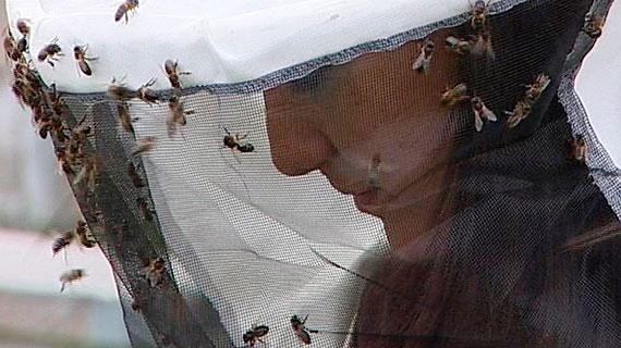 Kenza Hamzagoui - Missionarin in Sachen Honig. Die junge Imkerin lehrt in der Sahara den richtigen Umgang mit Bienen. Bild: SWR