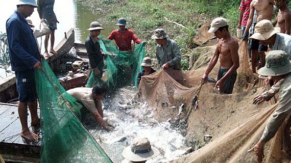 Die Teiche sind so voller Fisch, dass die Netze in kürzester Zeit mit Pangasius gefüllt sind. Bild: NDR