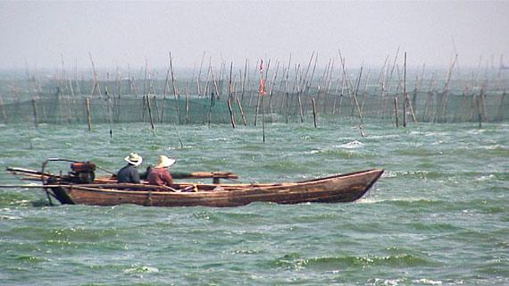 Der Tai-See, Chinas drittgrößter Trinkwassersee. Bild: PHOENIX/ZDF-Studio Peking