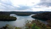 Lagune San Helvecio im Rio Doce National-Park. Bild: NDR/Petra Spamer-Riether